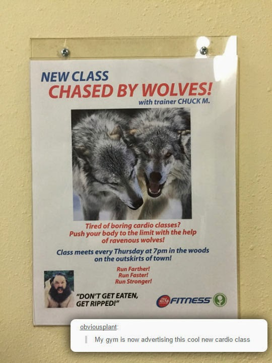 funny-advertising-gym-wolves-run