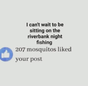 207 mosquitoes