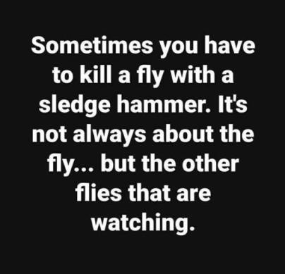 killing flies