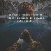 common stressors