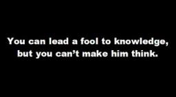 lead a fool